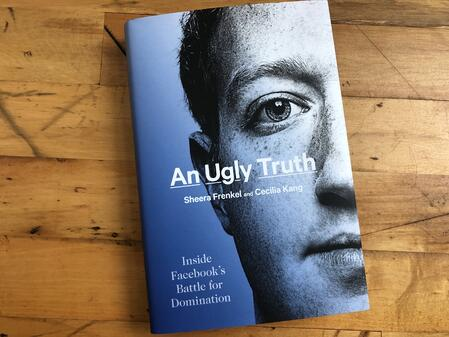 An Ugly Truth cover