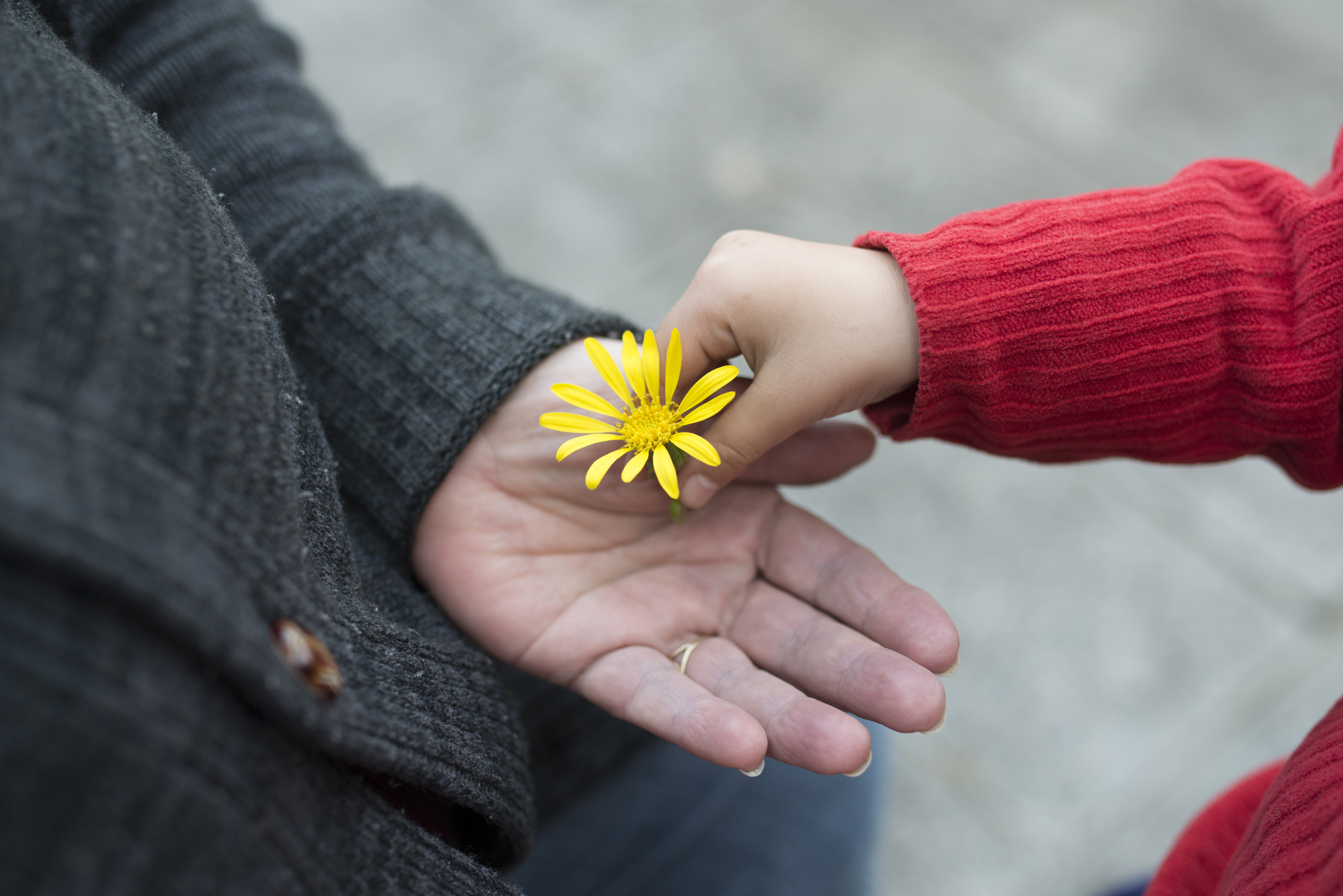 The NEW New Rules of Marketing and PR Requires Kindness